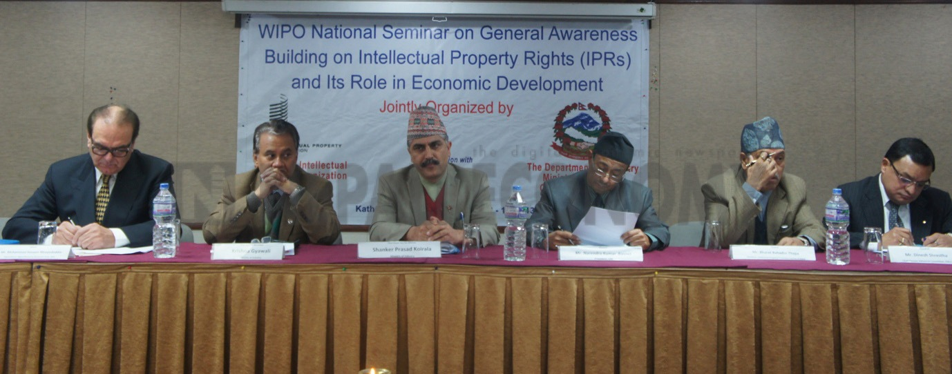 Knowledge-based industry needs protection for economic development