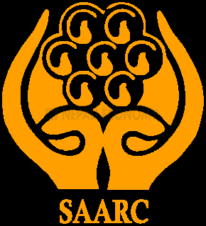 Increased SAARC business visa sticker will help South Asia integrate economically