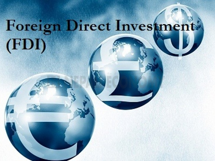 Total foreign investment reaches Rs 113.18 billion