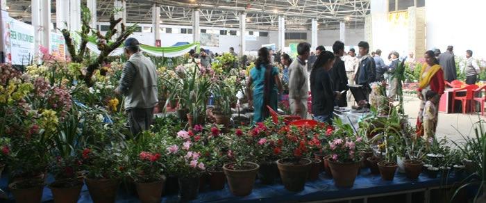 Floriculture expo draws 58,000 visitors