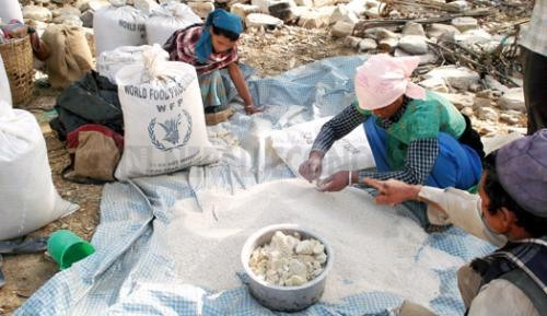 Probe ponel reveals WFP supplied damaged rice